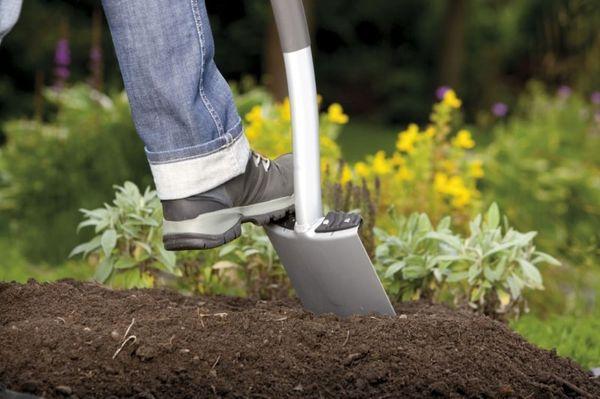 При подготовке грунта нужно перекопать его на глубину штыка лопаты