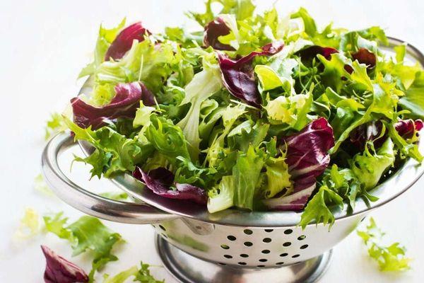 Латук незаменим в диетическом питании и легких салатах
