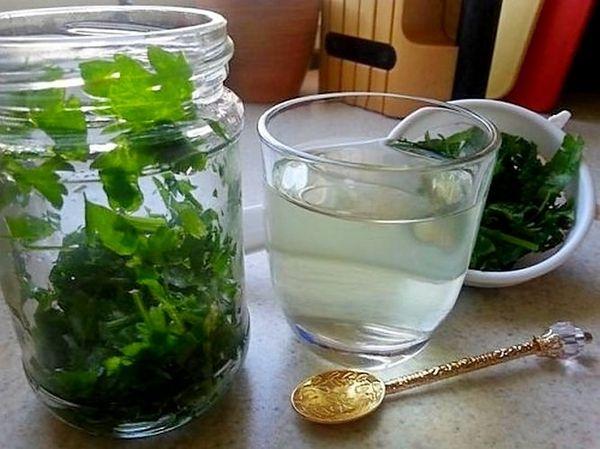Отвар листвы латука помогает от кашля и бессонницы