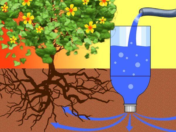 Система полива помидоров в теплице