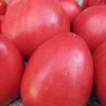 Самоопыляемые помидорки