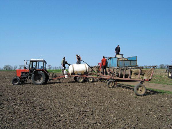 Довсходовые гербициды вносятся в период между посевом и всходами семян