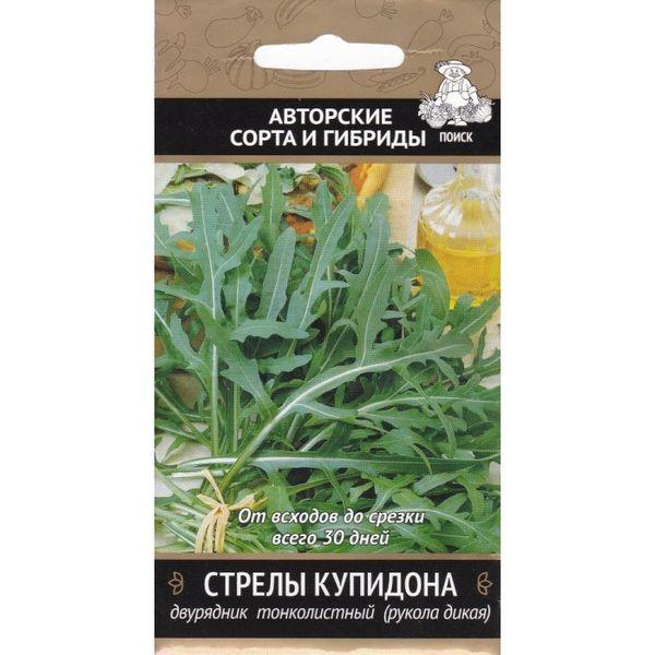 Руккола: посадка, уход и выращивание из семян в открытом грунте
