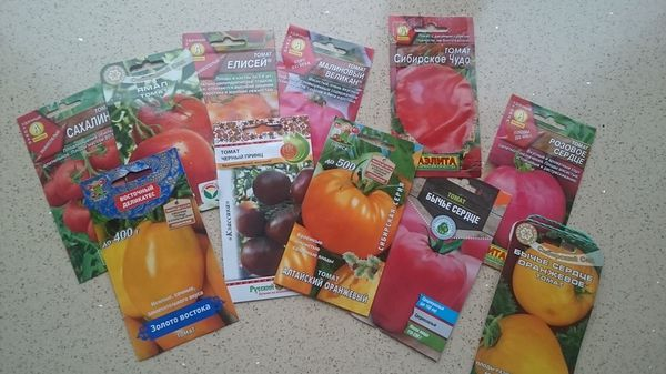 Выбор семян и сорта томатов - один из первых этапов агротехники