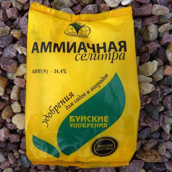 Для тепличных условий выращивания можно провести подкормку аммиачной селитрой