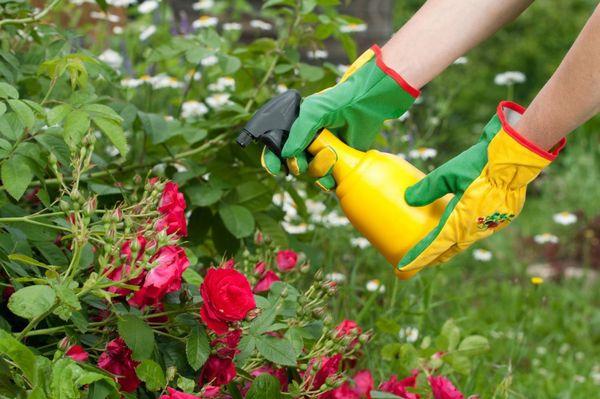 При работе с удобрением обязательно необходимо использовать защитные средства