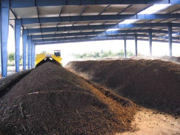 Хранение свиного навоза в промышленном масштабе