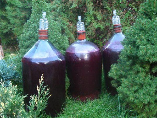 Брожение лучше всего осуществлять в стекле в виде бутылей или баллонов