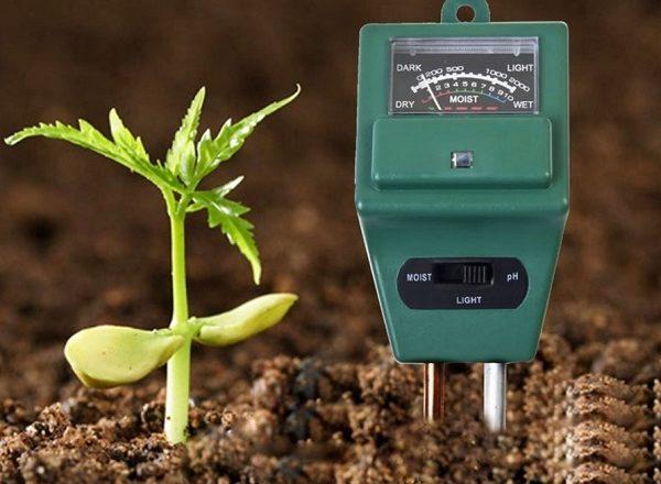 как определить кислотность почвы в домашних условиях
