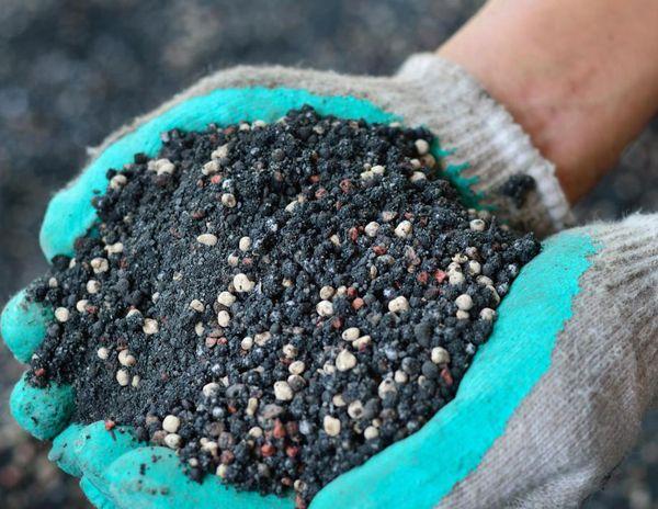 Фосфорные удобрения для растений