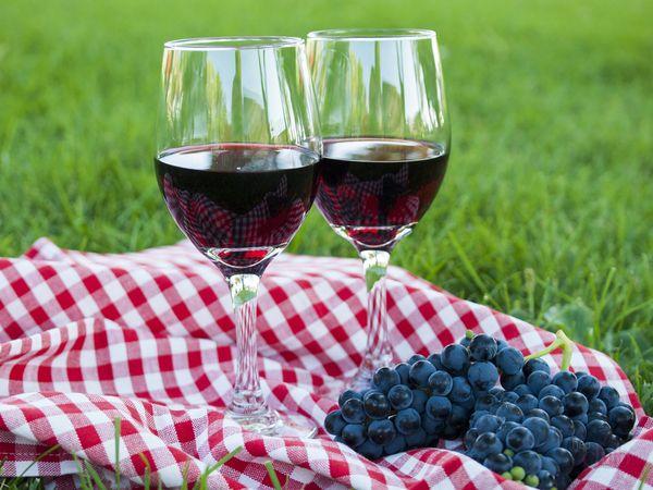 Как изготовит вино из винограда в домашних условиях 35