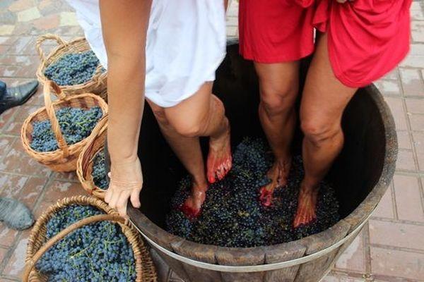 При давлении винограда важно не повредить семена