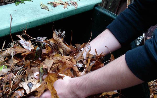 Собранную листву необходимо измельчить вручную или при помощи измельчителя