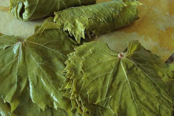 Лист винограда крупным планом на тарелке