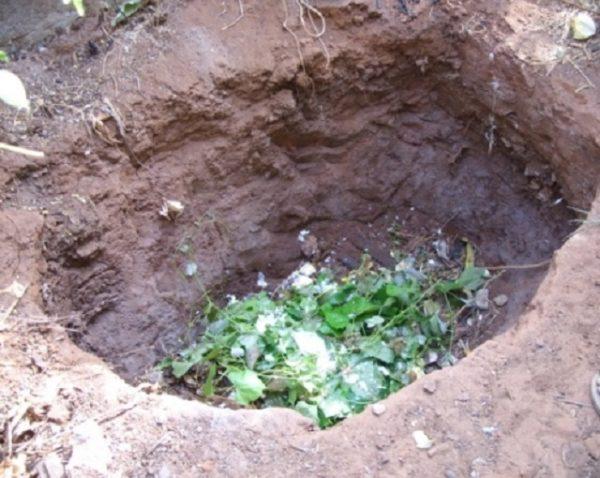 Компостная яма может быть просто вырыта или забитонирована