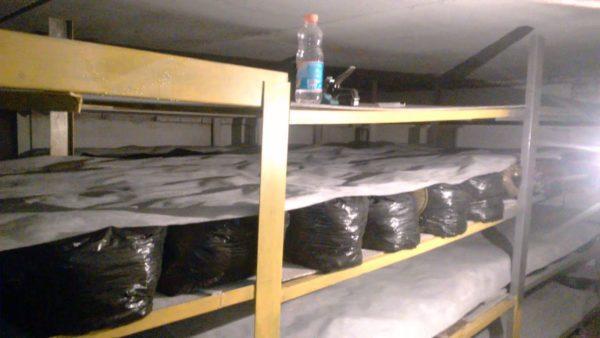 Подготовленный подвал для выращивания шампиньонов