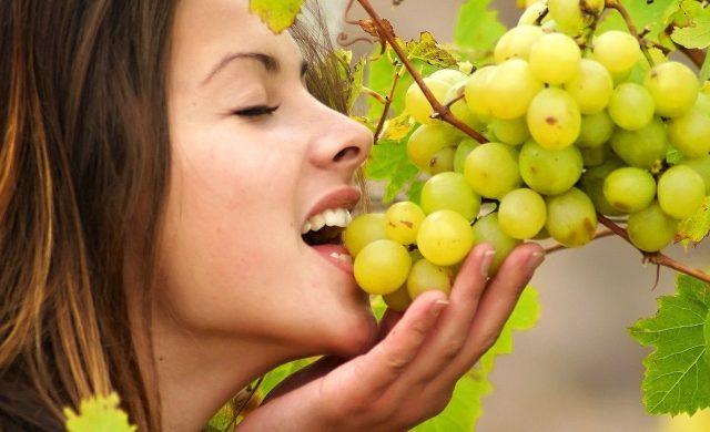 Можно ли есть виноград