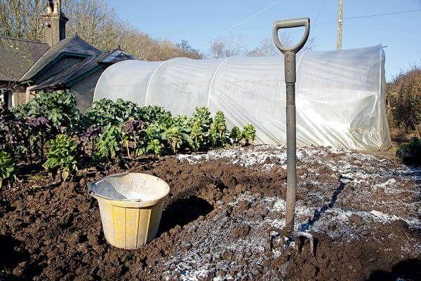 Удобрение почвы под перекопку