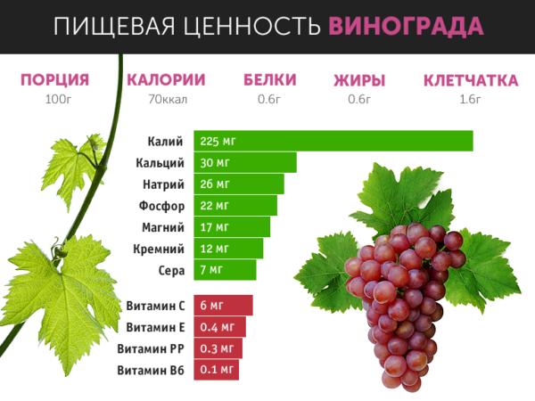Наглядный график содержания витаминов в 100 г винограда