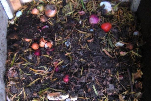 Органика для компоста