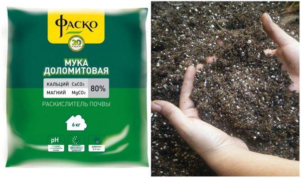 При повышенной кислотности почвы перед суперфосфатом вносят доломитовую муку