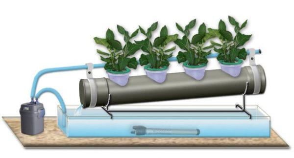 Конструкция для выращивания растений методом гидропоника