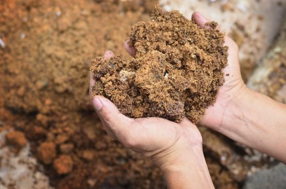 Правильный Ph почвы