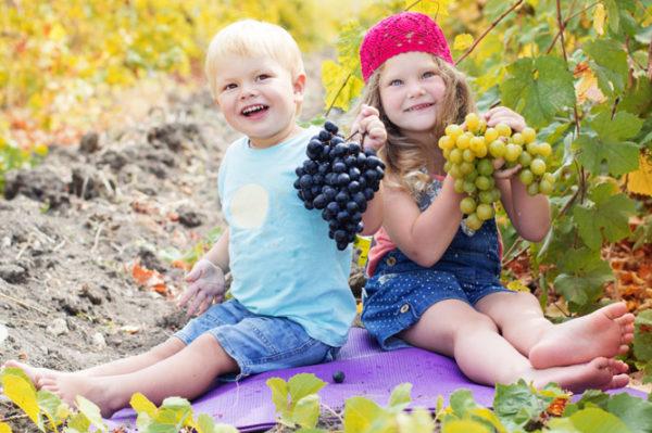 виноград детям