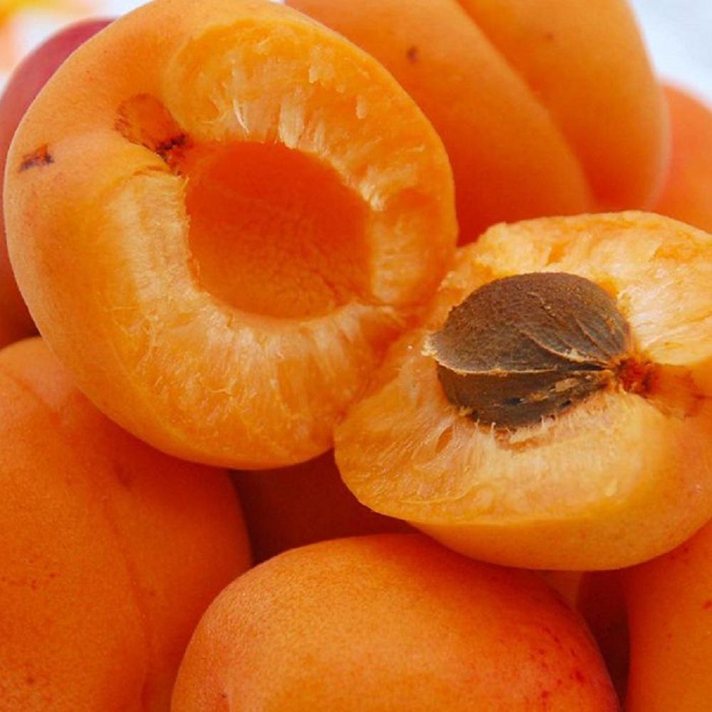 Солнечный плод